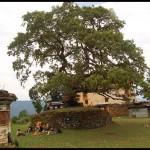 Бутан, 26