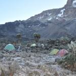 Килиманджаро, 1