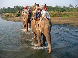 Непал, слоны