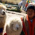 Перу-Боливия-Чили, 12