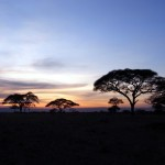 Танзания, 19