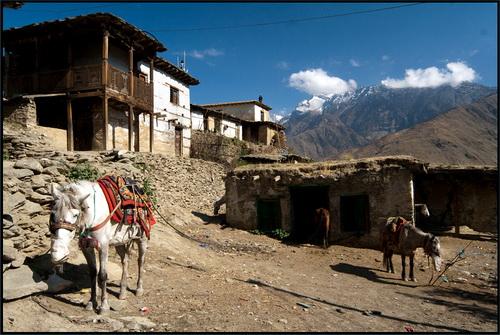 Треккинг в Непале, Долпо